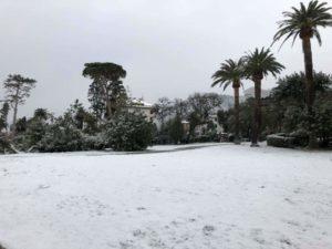 Nervi: risveglio sotto la neve